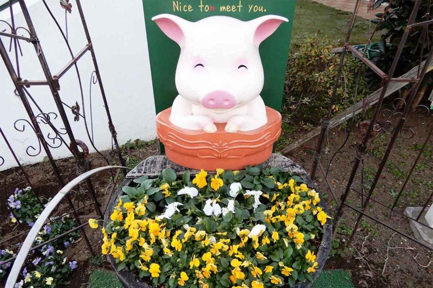 サイボクハムにある豚のオブジェ