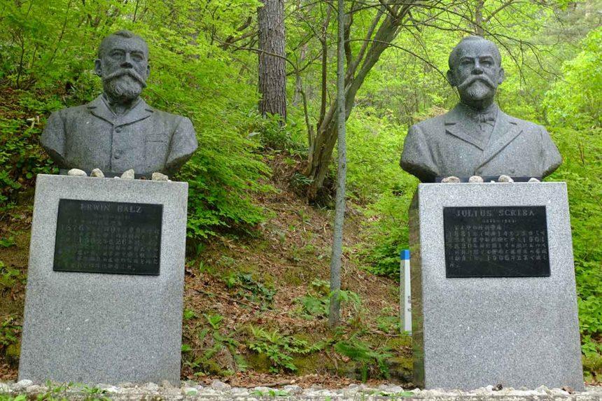 ベルツ・スクリバ両博士胸像